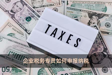 企业税务专员如何申报纳税