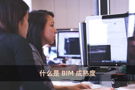 什麽是BIM成熟度