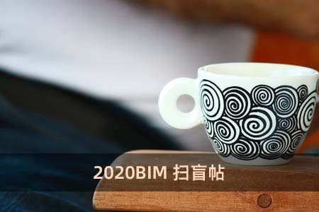 2020BIM掃盲帖