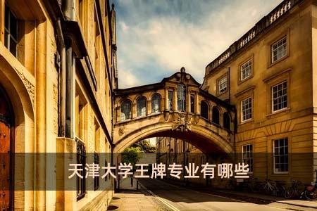 天津大学王牌专业有哪些