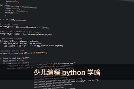 少儿编程python学啥