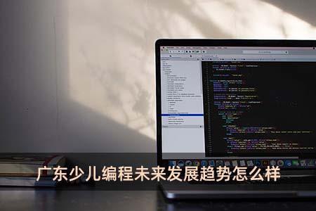 广东少儿编程未来发展趋势怎么样