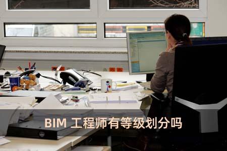 BIM工程师有等级划分吗
