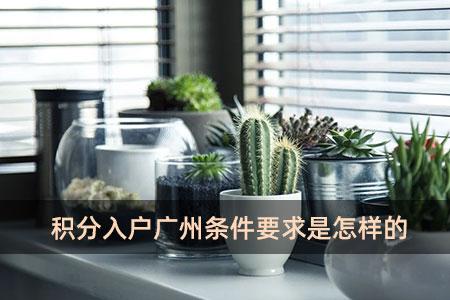 积分入户广州条件要求是怎样的?
