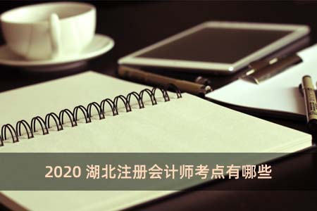 2020湖北注册会计师考点有哪些