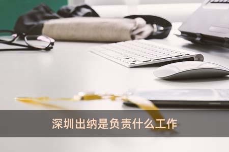 深圳出纳是负责什么工作