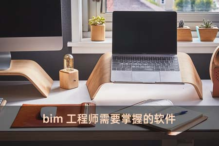 bim工程师需要掌握的软件