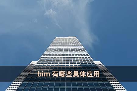 bim有哪些具体应用