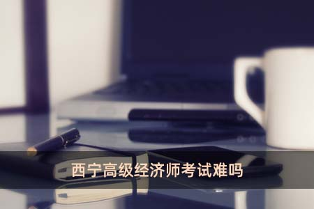 西宁高级经济师考试难吗