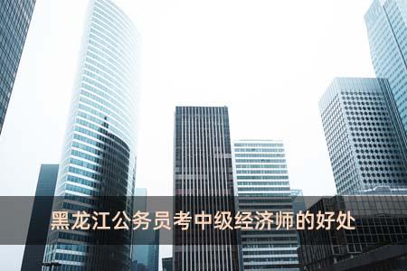 黑龙江公务员考中级经济师的好处