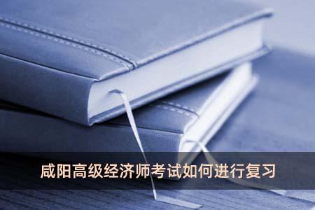咸阳高级经济师考试如何进行复习