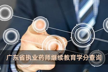 广东省执业药师继续教育学分查询