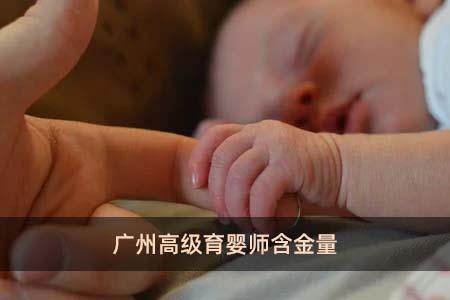 广州高级育婴师含金量