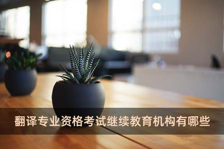 翻译专业资格考试继续教育机构有哪些