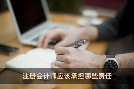 注册会计师应该承担哪些责任