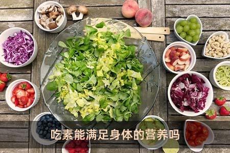 吃素能滿足身體的營養嗎